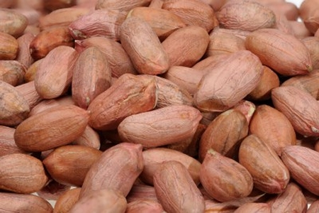[Groundnuts]